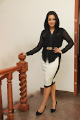 Catherine Tresa latest Glam pics-thumbnail-1