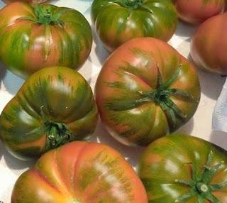 kochbuch f r max und moritz brotsalat mit raf tomaten. Black Bedroom Furniture Sets. Home Design Ideas