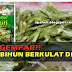 Bihun Cap Jasmine Berkulat Yang Dibeli di Giant (3 Gambar)