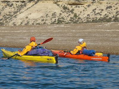 Sea Kayaking in Patagonia Peninsula Valdes Marine Life Whales Penguins and Sea lions