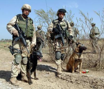 Iraq; Negeri Anjing