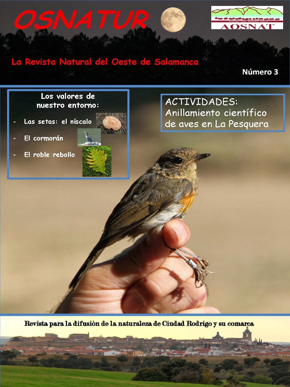 Revista OSNATUR Nº 3