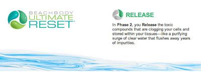www.alysonhorcher.com, alysonhorcher@gmail.com, www.facebook.com/alyson.horcher, ultimate reset, phase 2, ultimate reset release phase