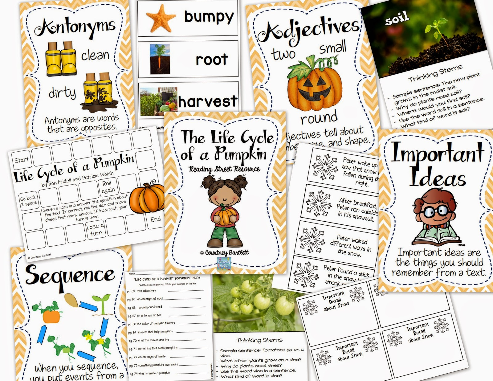 http://www.teacherspayteachers.com/Product/Life-Cycle-of-a-Pumpkin-Reading-Street-Resource-1620062