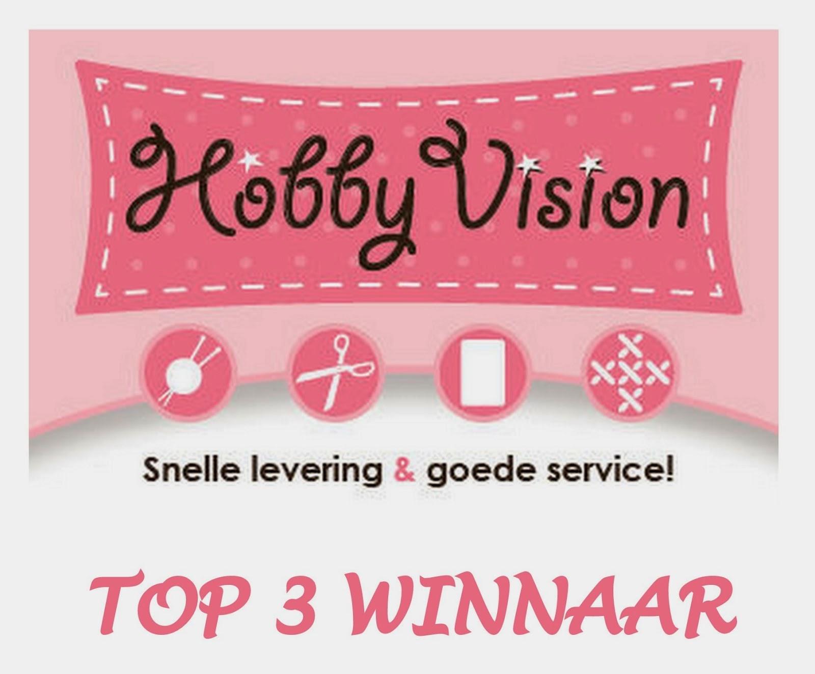 Top 3 winnaar bij Hobbyvision