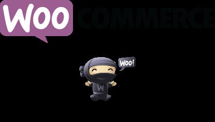 Panduan Menggunakan Plugin WooCommerce Untuk Membuat Toko Online di Wordpress