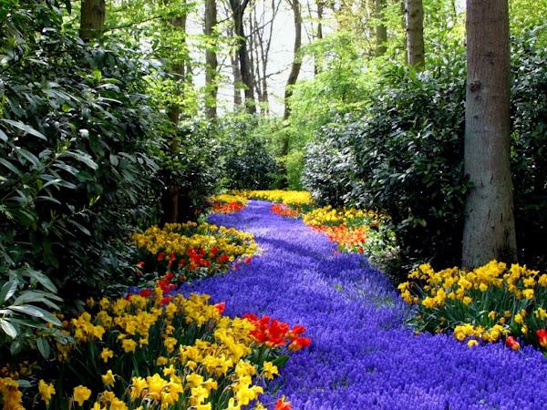 Bienvenidos al nuevo foro de apoyo a Noe #250 / 28.04.15 ~ 30.04.15 - Página 4 Primavera+flores+paisajes