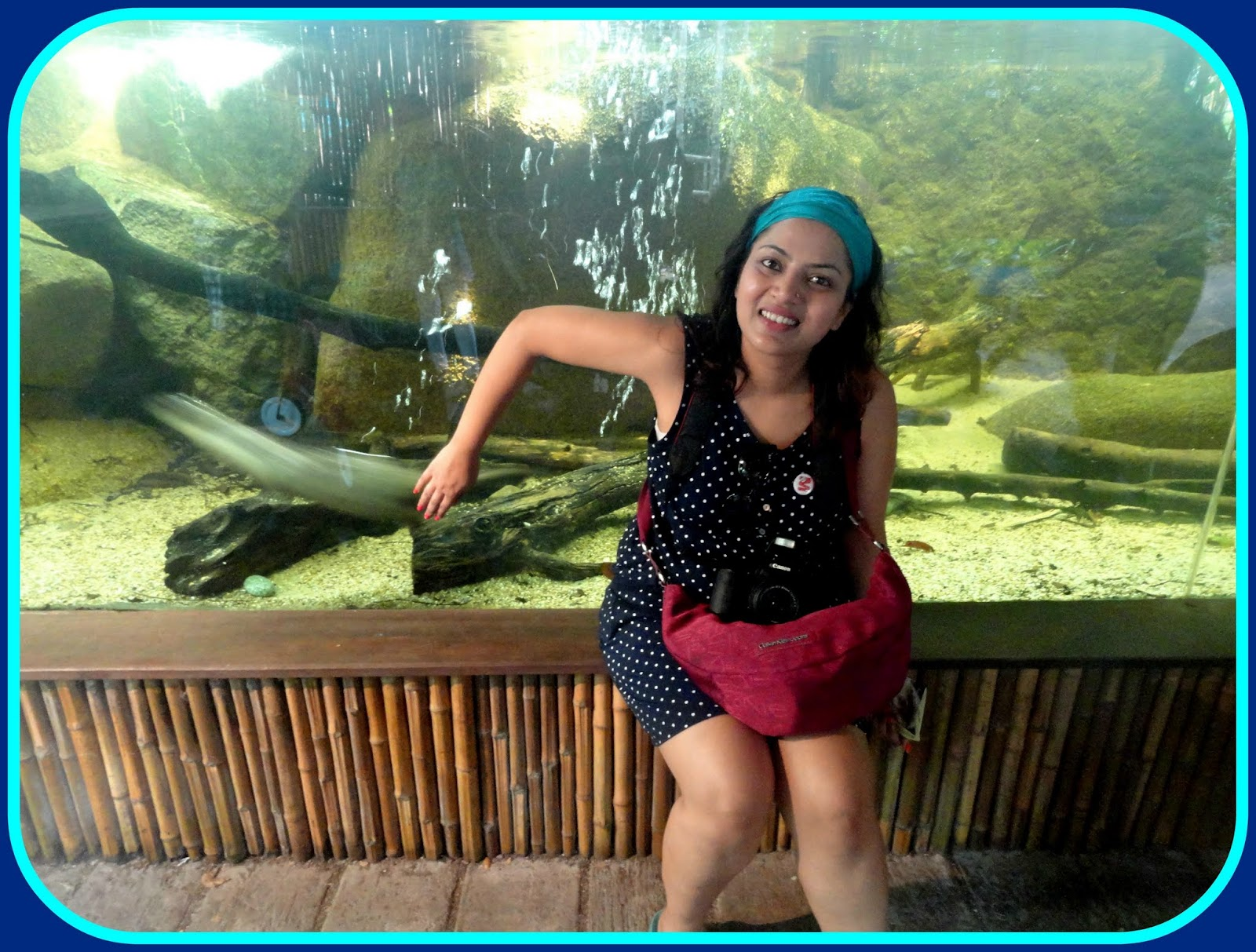 trystwithvanillagirl,singapore zoo,indianbeauty,indianmakeup