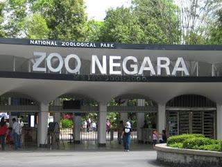 SAM : Pengurusan Zoo Di Malaysia Abai Undang-undang Pelihara Hidupan Liar