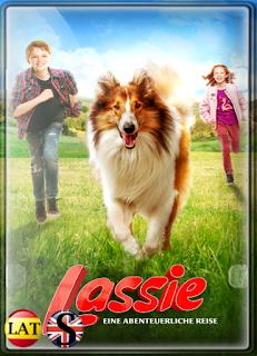 Lassie Vuelve a Casa (2020) FULL HD 1080P LATINO/ALEMAN