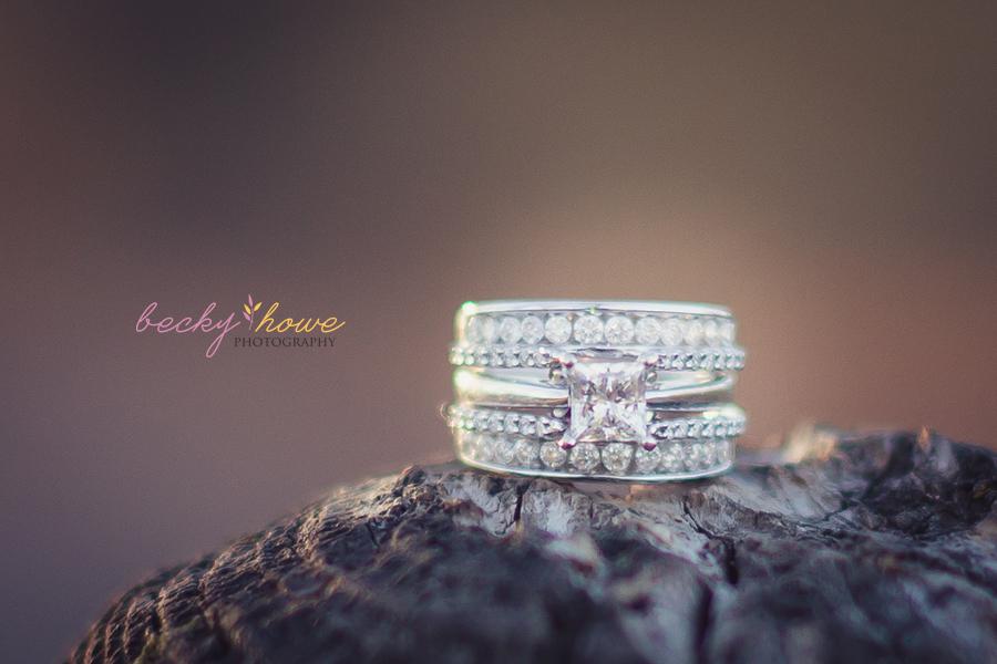 elmwood park engagement photography