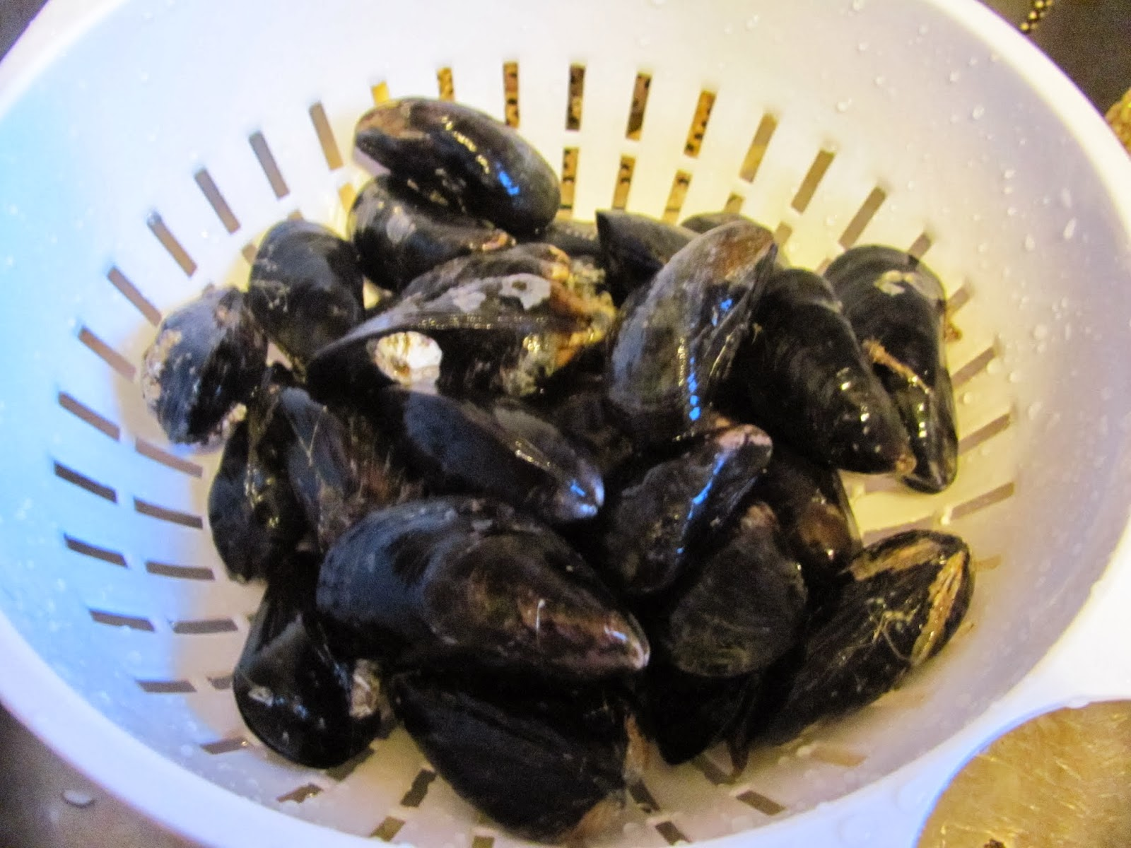 Cleaning the Mussels