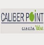 Caliber Point Walkin drive in Chennai 2014