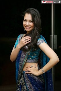Actress Natalie Rout  Pictures in Saree at Hang Up Movie Audio Launch  0010.jpg