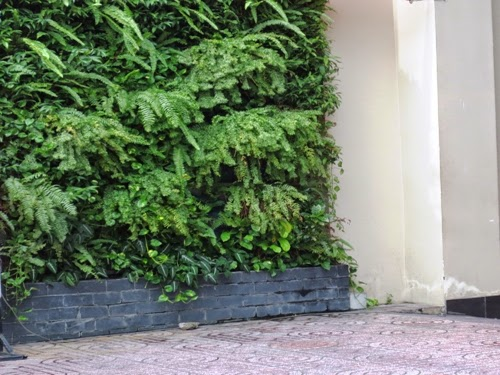 green walls in the house | Manufacturers Outdoor Furniture
