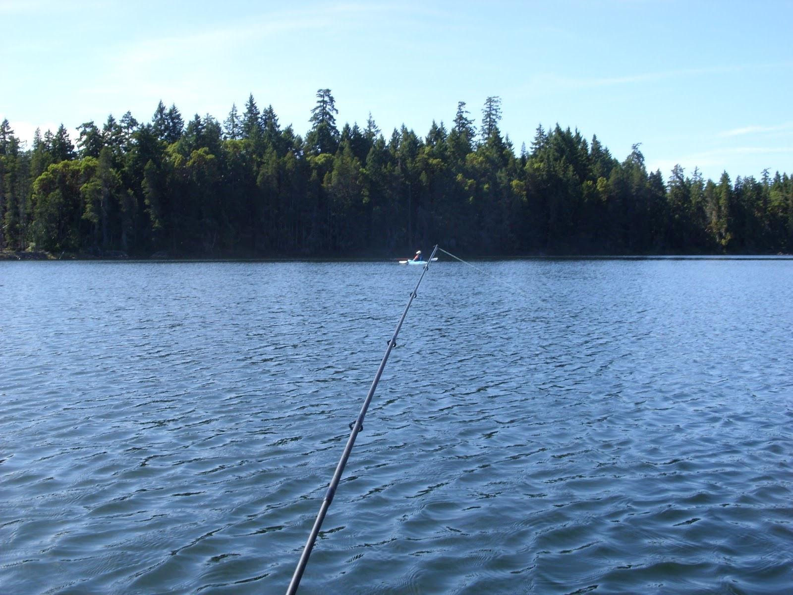 Left coast mumblings by colin t paterson trout fishing for Fishing vancouver island