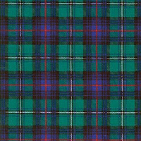 plaid green  22197.1325782287.500.375 Luck O The Irish Birthday Bash Giveaway