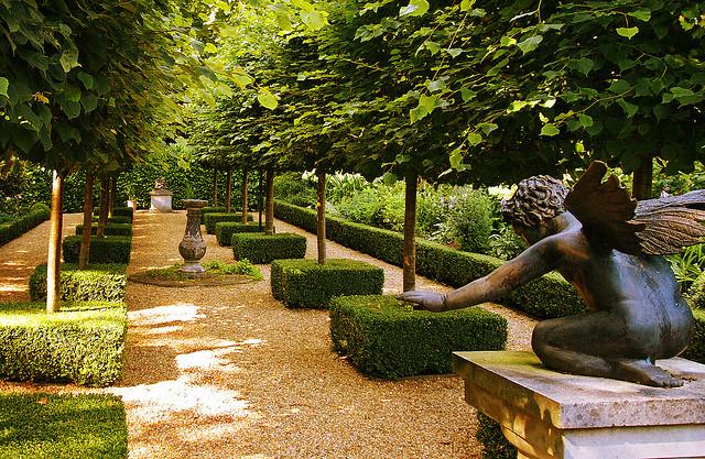 El jardinero plantas y flores rboles y arbustos para for Arbustos para jardin