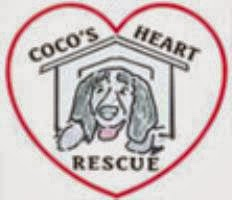 Support Coco's Heart Dog Rescue! Click to Donate and Adopt!