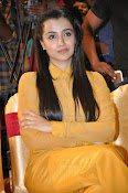 Trisha photos at Cheekati Rajyam event-thumbnail-17