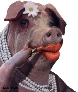 http://1.bp.blogspot.com/-TptSUWytqa4/TkPBohoX7YI/AAAAAAAALAo/OhehQqI_r48/s1600/Lipstick-Pig-9.jpg