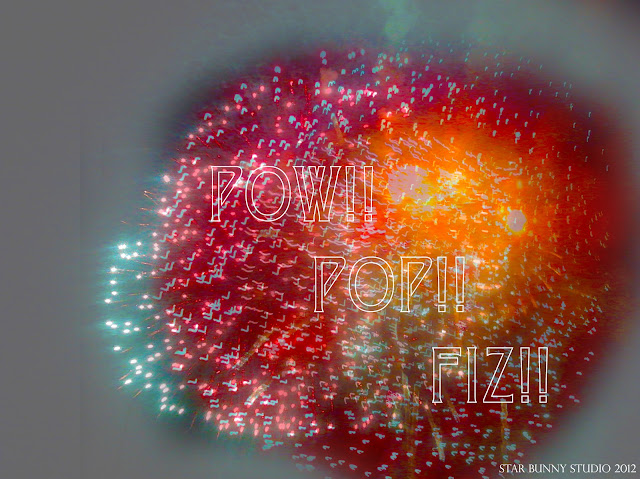 POW!! POP!! FIZ!! DC Fireworks photo by Star Bunny Studio 2012