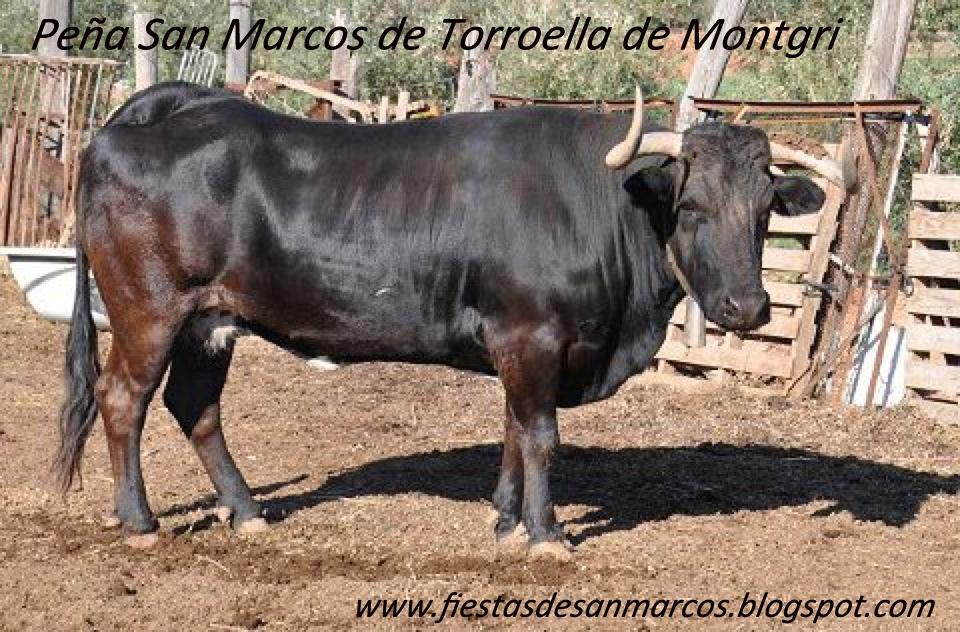 Lujo Marcos De Cuadros De Vaca Ilustración - Ideas Personalizadas de ...