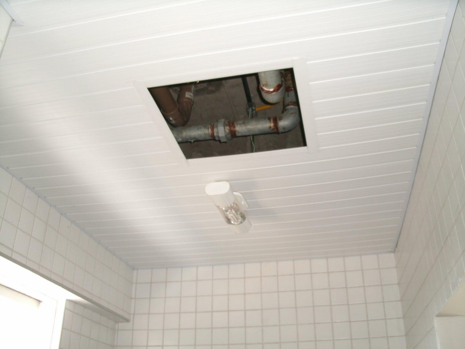 Forro do teto do banheiro caiu e nunca foi providenciado #5C4938 1600 1200