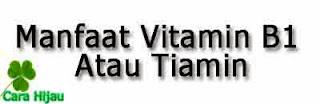 Manfaat Tiamin Atau Vitamin B1