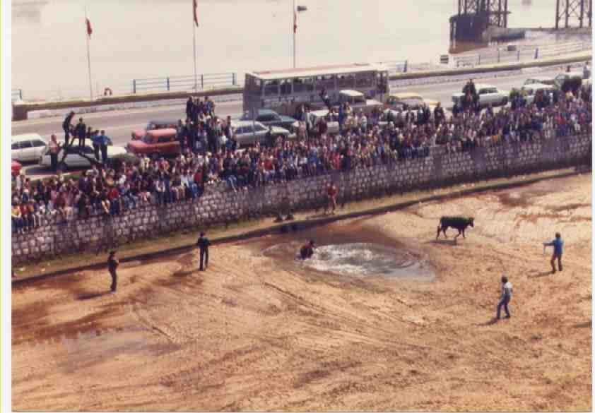 Astillero Cantabria vaquillas