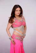 Sneha Ullal Glamorous in Pink Photo shoot-thumbnail-3