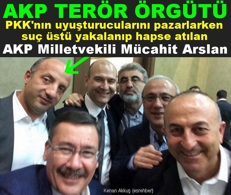 AKP'NİN TERÖRİSTLERİNİ TANIYOR MUSUNUZ?