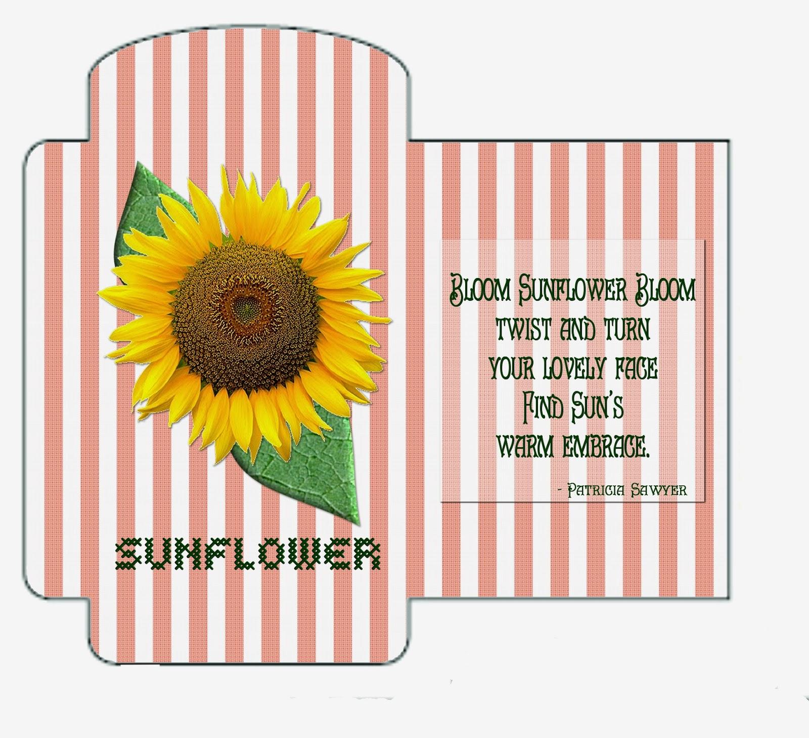 http://1.bp.blogspot.com/-TqwDbevUl0c/VUTF0stahrI/AAAAAAAAMTM/ZtBRN3nAoe0/s1600/sunflowerseedpacket_coveredinglue.jpg