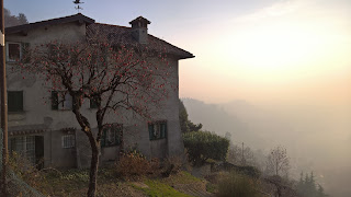 House and persimmon treeon Via Colle dei Roccoli