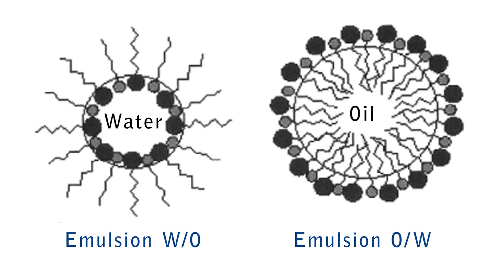 Restless Minds: Emulsion, oil/ water coloring droplets
