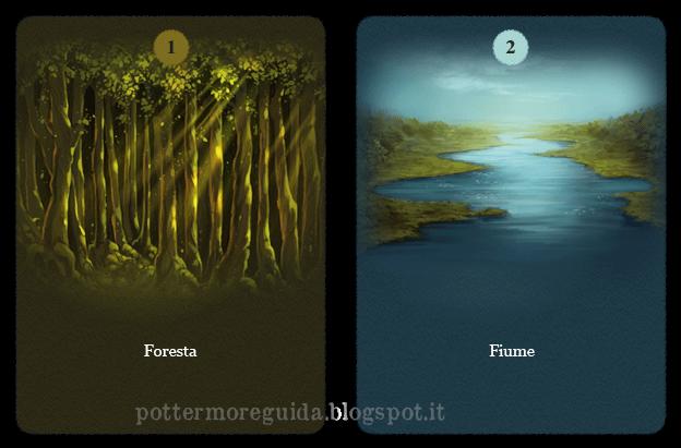 Domanda 15: Foresta o fiume?