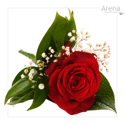 Pictures Flowers  Weddings on Flowers  Red Flowers For Weddings