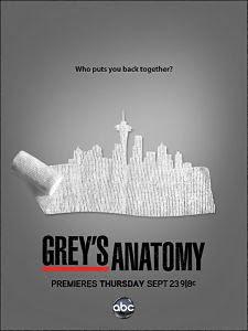 Anatomía de Grey Temporada 8×07 Online