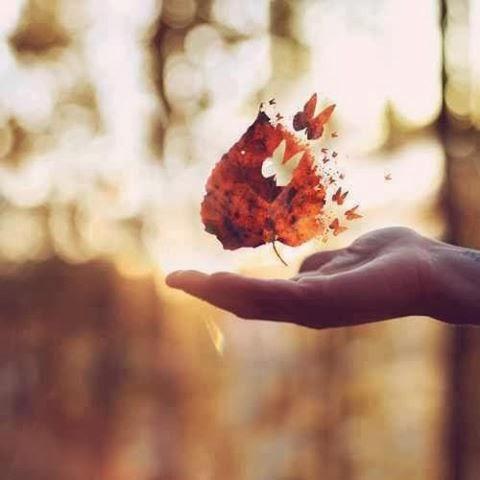 Cultiva tu paz interior emprendimiento y desarrollo personal for Meditacion paz interior