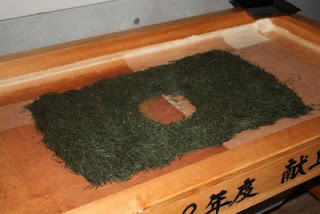 The fresh first flush Japanese green tea leaves are shown being handrolled into Japanese Temomi Shincha Tea