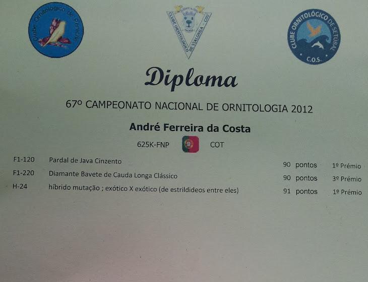 DIPLOMA CAMPEONATO NACIONAL 2012