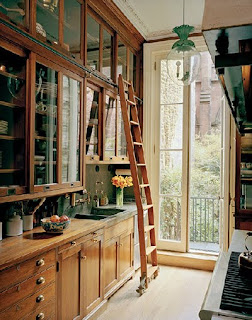 Using Verticle Space with Library Ladder in Kitchen