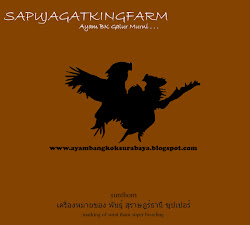 Iklan 'Sapujagatkingfarm'