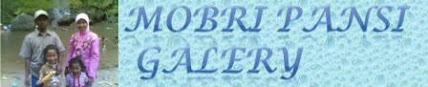 MOBRI PANSI GALERY