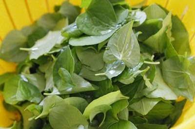 Vietnamese Food - Nước Rau Diếp Cá và Đậu Xanh