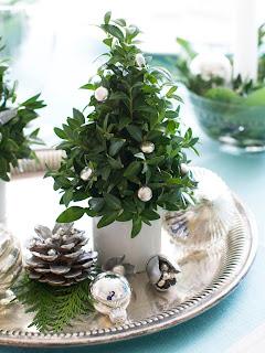 piccoli alberi di Natale immagine
