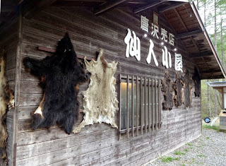 仙人小屋の熊皮