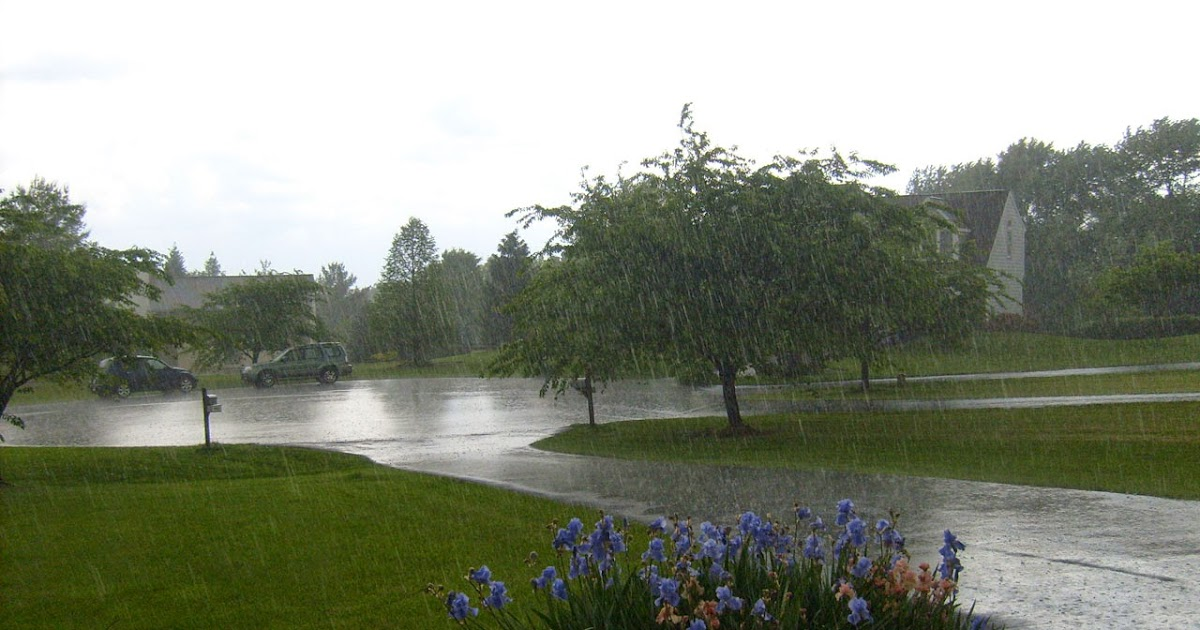 177 Words Short Essay on Rainy Season for kids