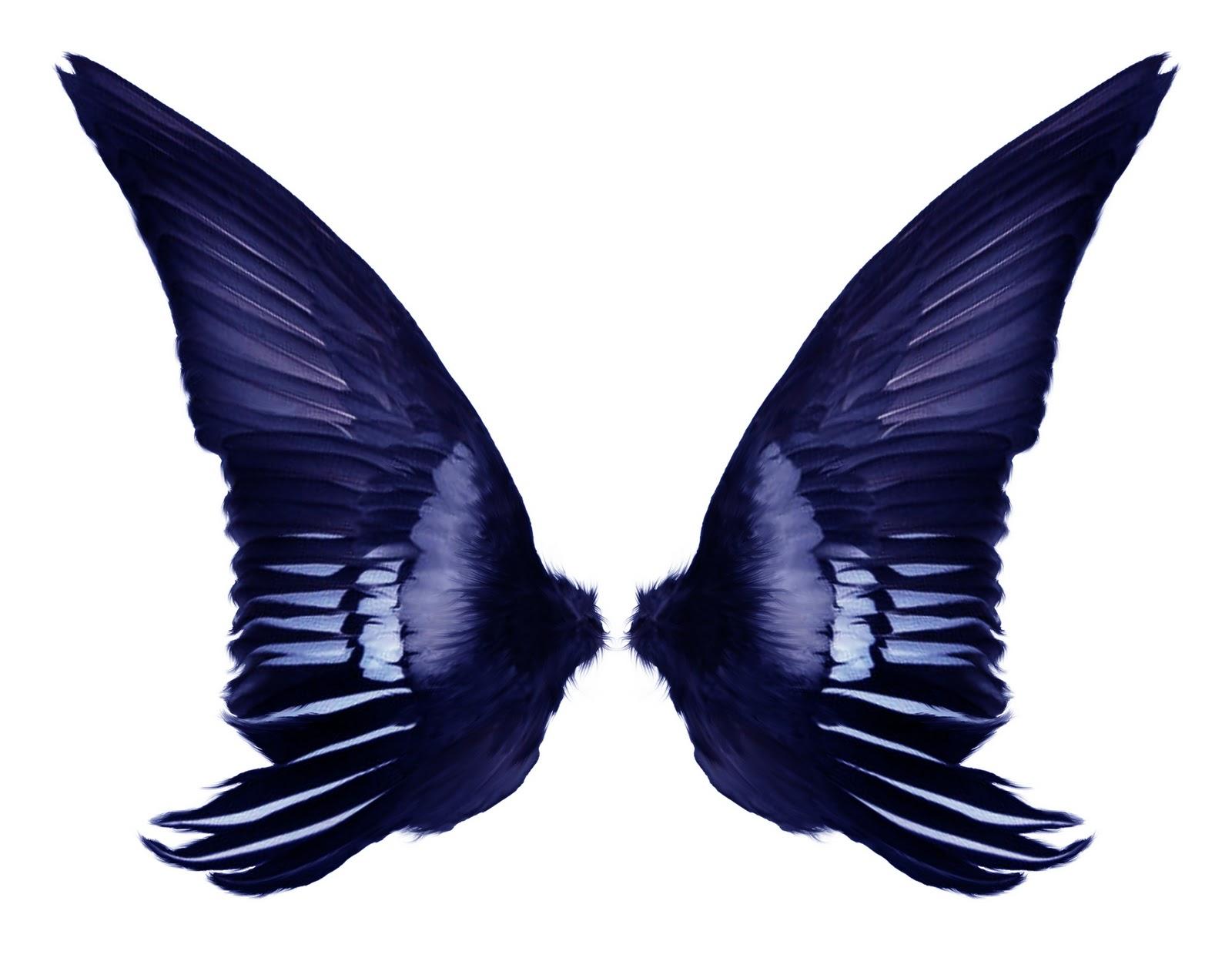 Psd Files Free Download: Dark wings, wings costume, black ...