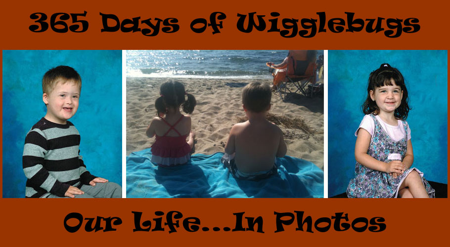 365 Days of My Wigglebugs